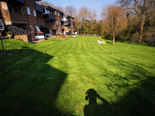 Commercial grounds maintenance in New Ash Green, Kent